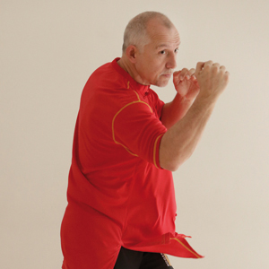 L'art du Jeet Kune Do